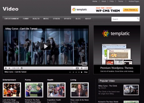 video wordpress theme lovely templates