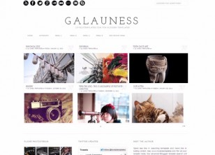 Galauness Photography Template Free